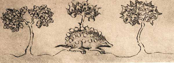 The hedgehog carries its food on its pens