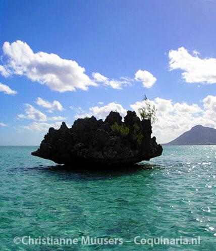 Tijdens een boottochtje bij Mauritius