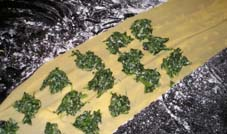The stuffing for ravioli is arranged on the dough