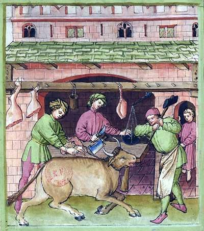 A calf is being slaughtered. Tacuinum sanitatis, BNF