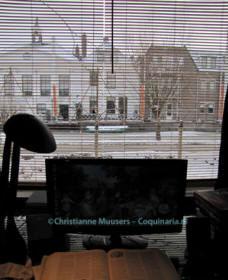 Winters uitzicht vanaf mijn werkplek