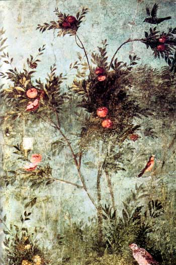 Romeinse tuin, met perzik- of abrikozenboom