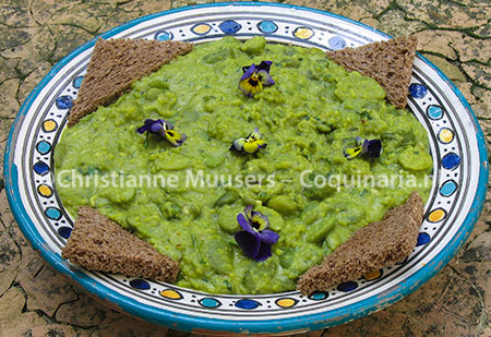Purée from broad beans, Scappi's recipe