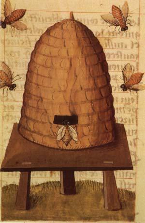 Medieval bee hive