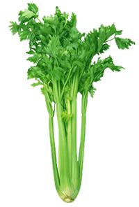 Stalk celery