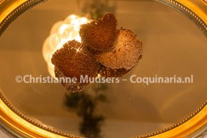Cocoskletskoppen