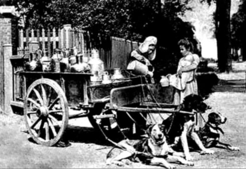 19th-century picture of a milkmaid selling milk from a dog-cart